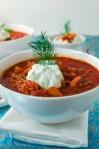 borscht2014